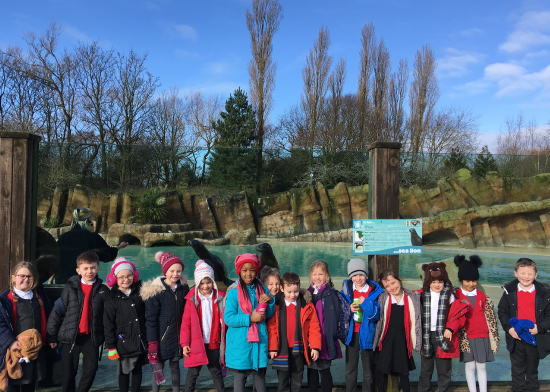 Year 1 Chester Zoo Image