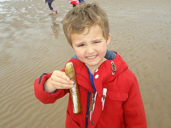 Reception Class visit to Formby Beach - July 2017 2