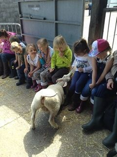 Year 1 visited Smithills Open Farm 2