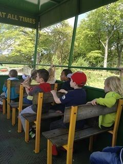Year 1 visited Smithills Open Farm 4