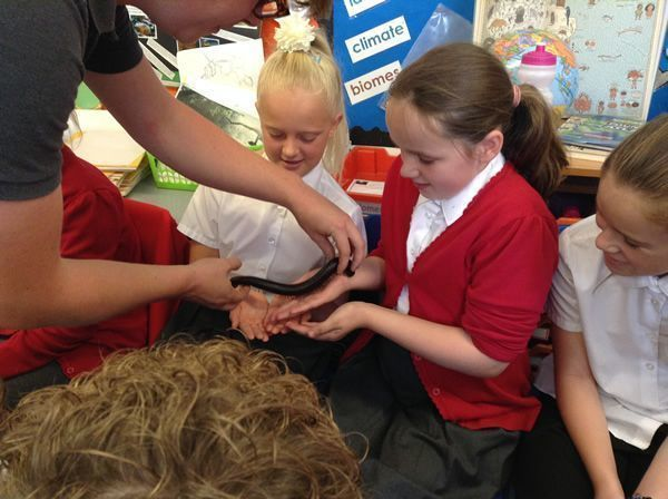 Year 6 had some special visitors - September 2016 12