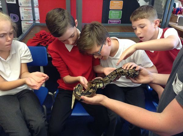 Year 6 had some special visitors - September 2016 14