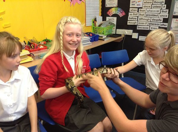 Year 6 had some special visitors - September 2016 15