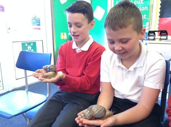 Year 6 had some special visitors - September 2016 3
