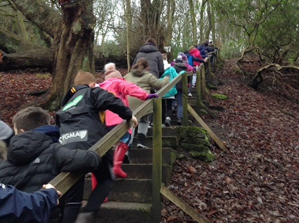 Year 6 residential trip to Robin Wood - January 2019 15