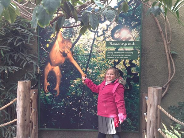 Year 6 spent the day at Chester Zoo - December 2017 11