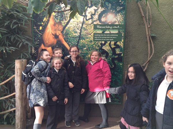 Year 6 spent the day at Chester Zoo - December 2017 12