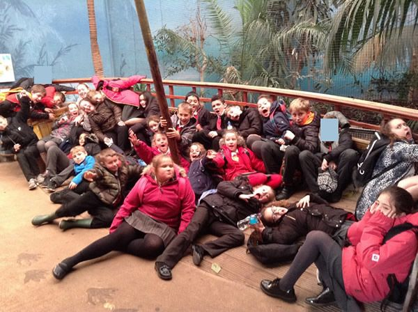 Year 6 spent the day at Chester Zoo - December 2017 14
