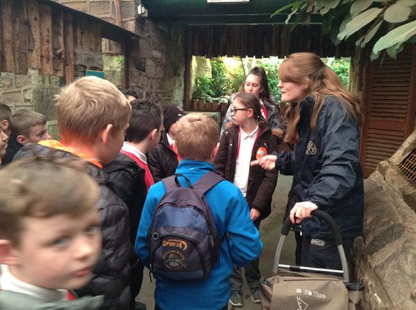 Year 6 spent the day at Chester Zoo - December 2017 2