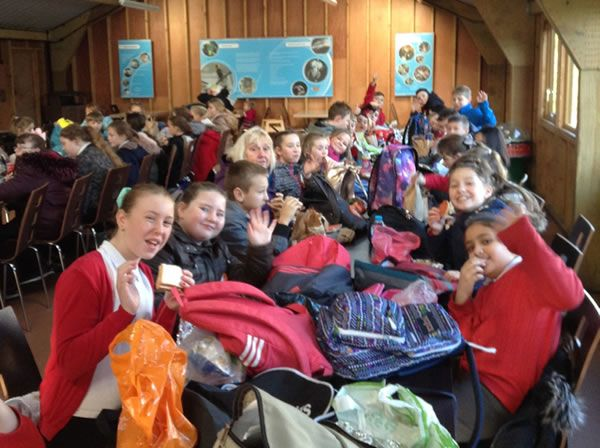 Year 6 spent the day at Chester Zoo - December 2017 7