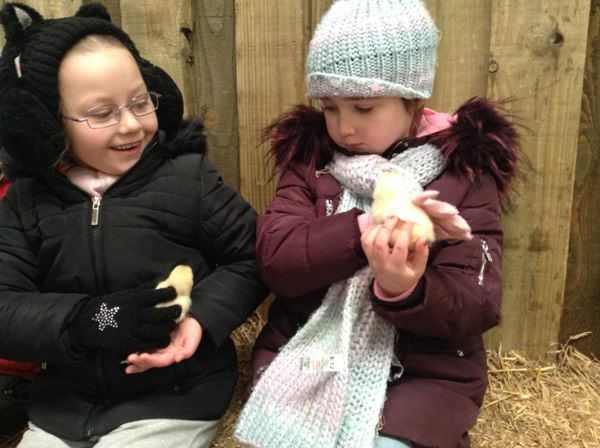 Year One's visit to Smithills Farm - February 2018 4
