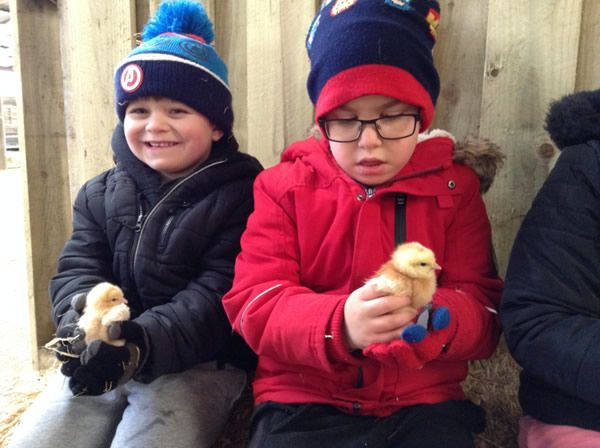 Year One's visit to Smithills Farm - February 2018 6