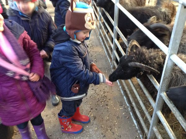 Year One's visit to Smithills Farm - February 2018 8