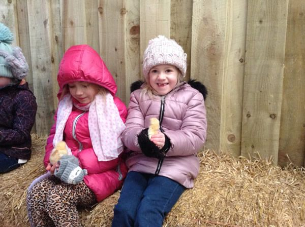 Year One's visit to Smithills Farm - February 2018 9